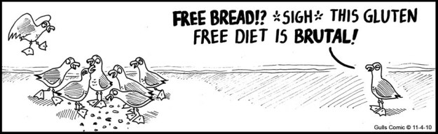 Gluten free comic, birds