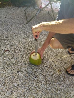 holeincoconut1