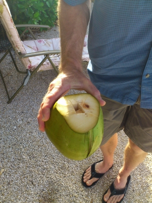 holeincoconut2