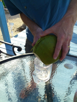 pouring coconut water2