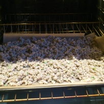 spaetzle scattered on cookie sheet in warm oven